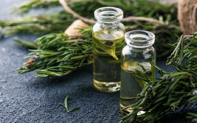 What Essential Oils are in WOD Relief Muscle Rub?